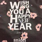 snidel2018-6-1