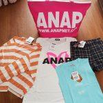 anap2018-4-2