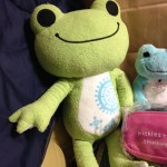 pickles-the-frog2016-2