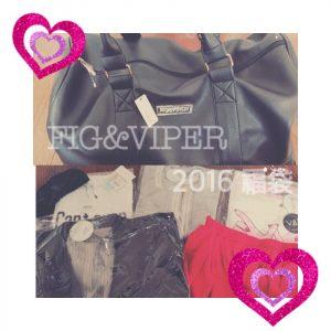 fig-viper2016-1