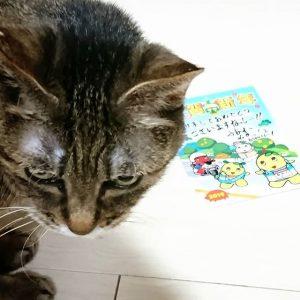 ふなっしーの福袋ネタバレ2019-12-9