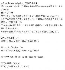 イーハイフンワールドギャラリーの福袋ネタバレ2020-10-2