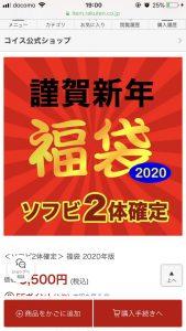 コイスの福袋の中身2020-9-1
