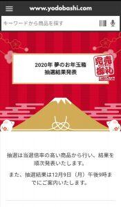 ヨドバシカメラの福袋の中身2020-10-1