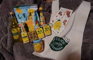 瀬戸内レモン農園の福袋の中身2020-7-1